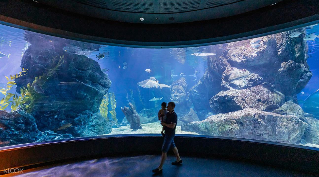 暹羅海洋世界,暹羅海洋世界門票,曼谷暹羅海洋世界