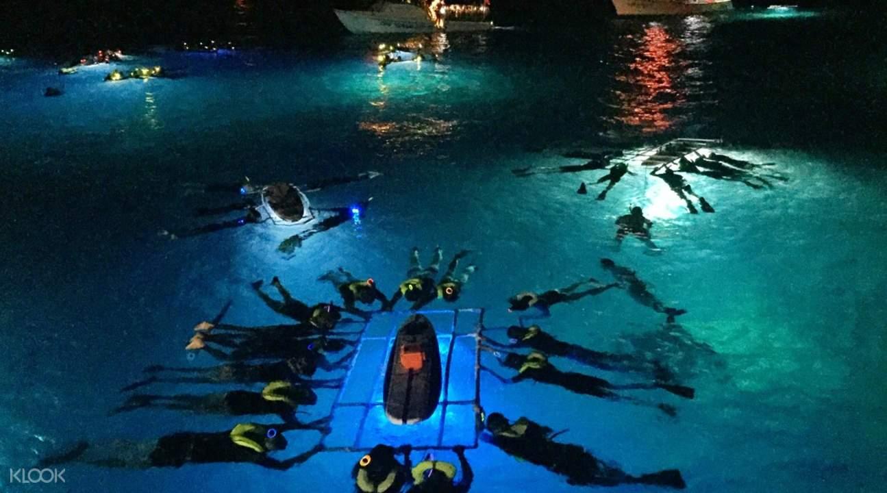 夏威夷大岛夜潜魔鬼鱼观光