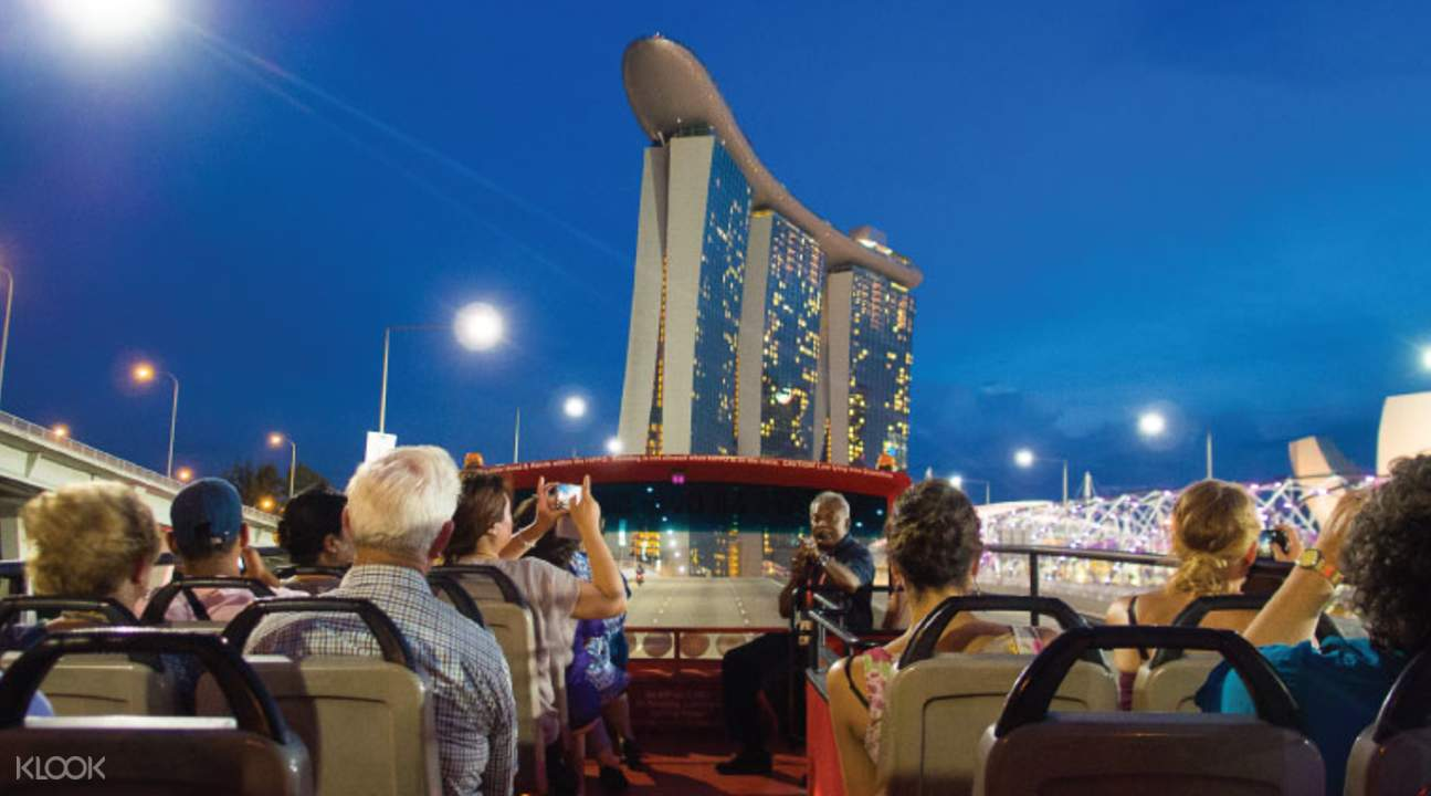 HiPPO Bus Moonlight Adventure