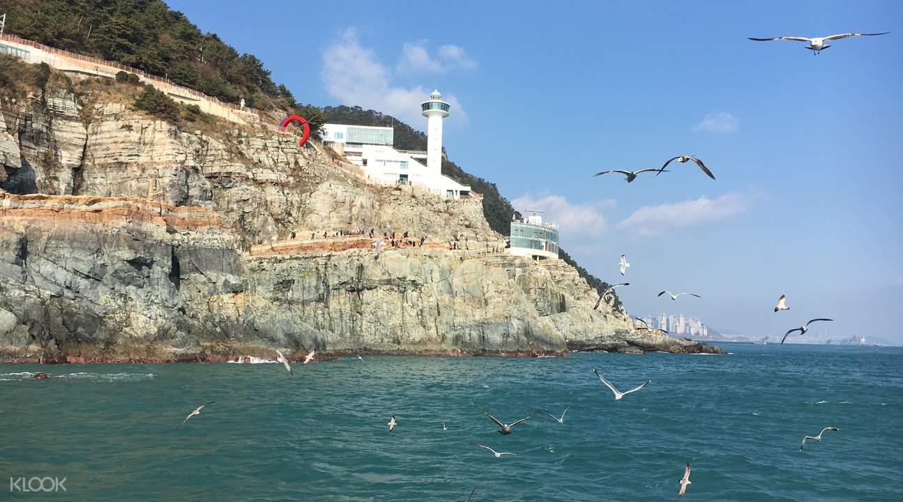 Busan private customized tour