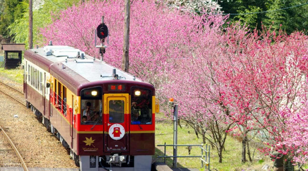 渡良瀨溪谷鐵道