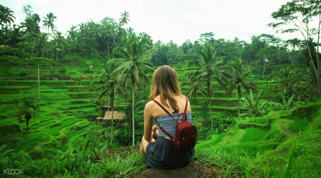 a woman looking at the rice terraces in bali