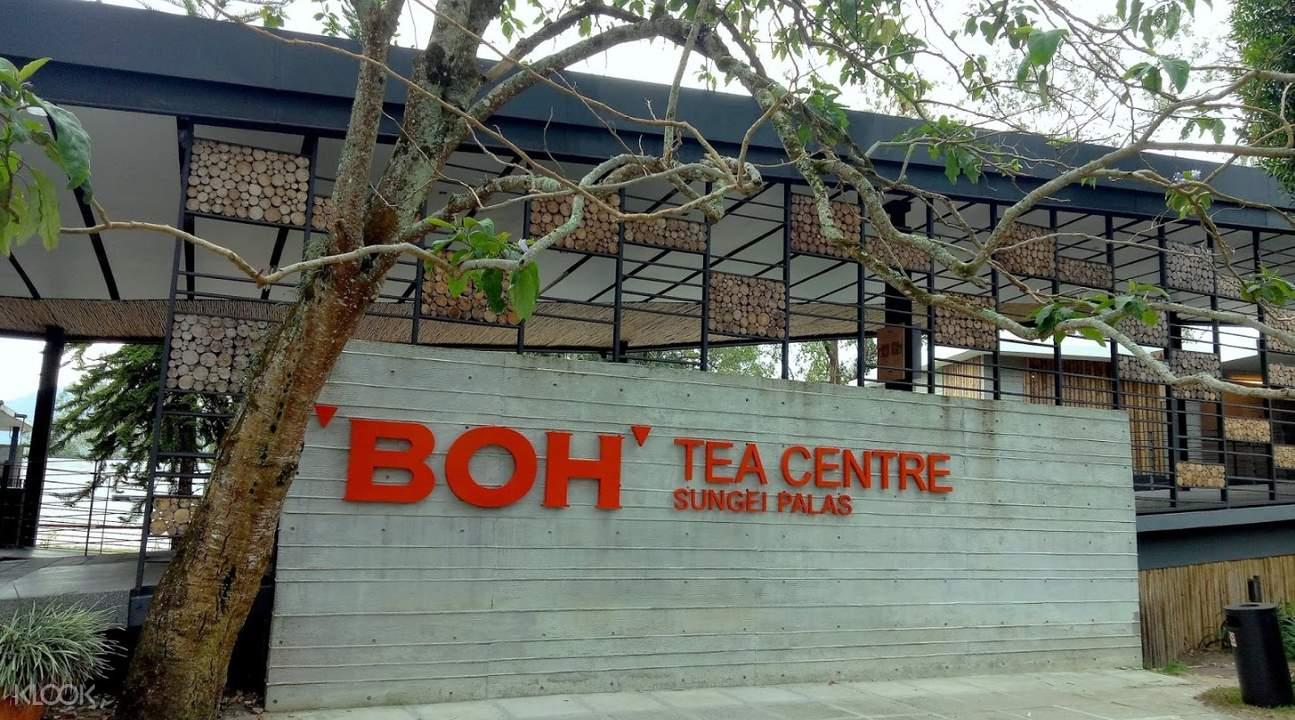 entrance of boh tea center