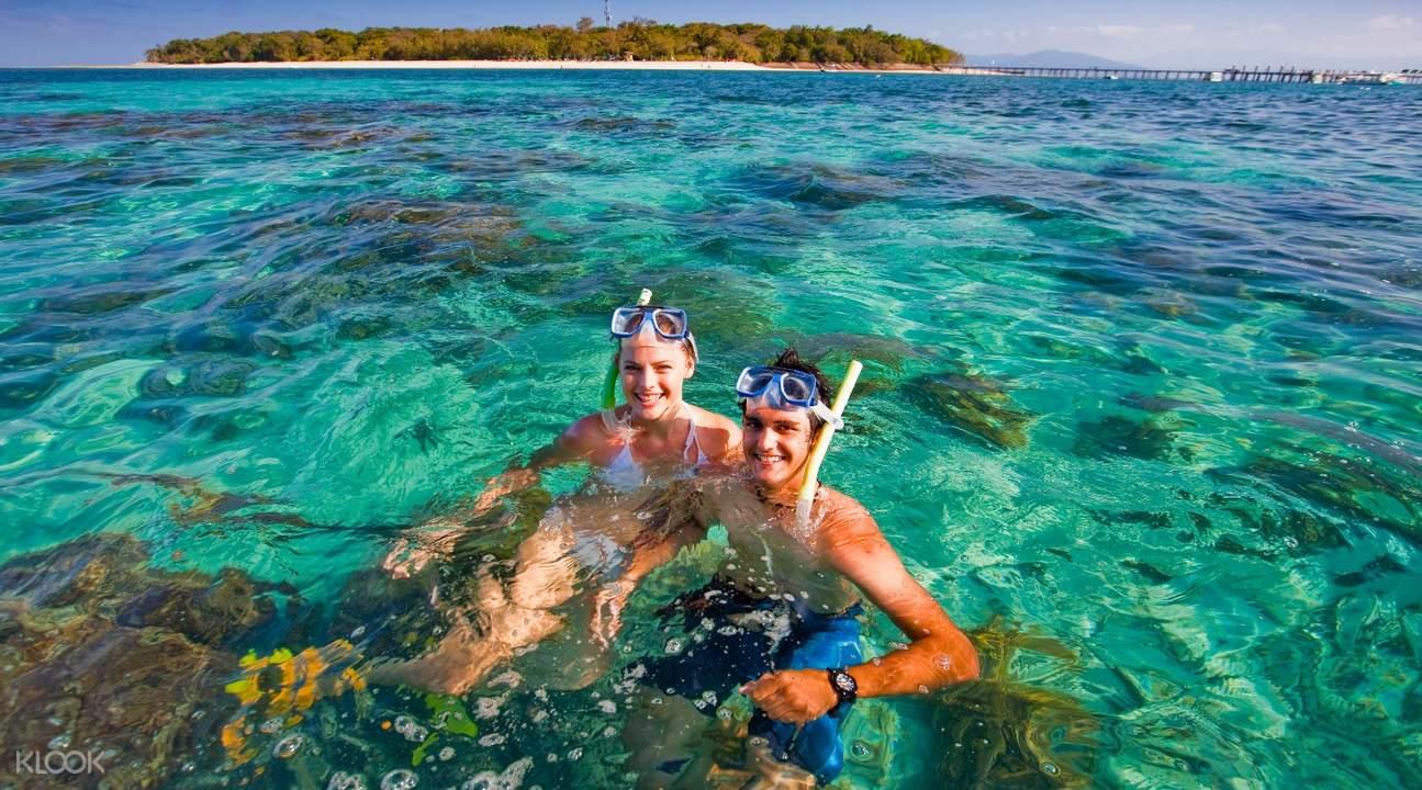 Couple Snorkelling 2 HR,凱恩斯大貓小貓號綠島遊船一日遊,凱恩斯綠島遊船一日遊,凱恩斯綠島遊船
