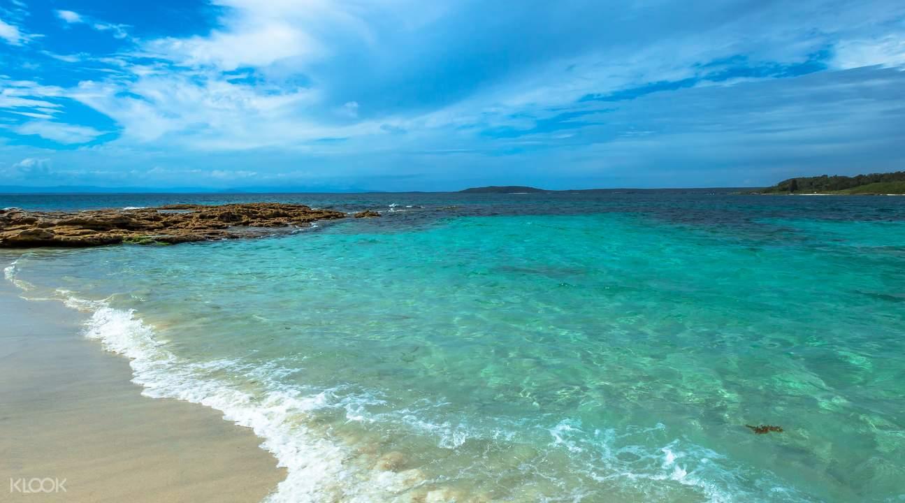 杰维斯湾观海豚生态游