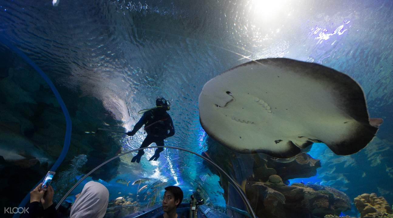 aquaria klcc tunnel