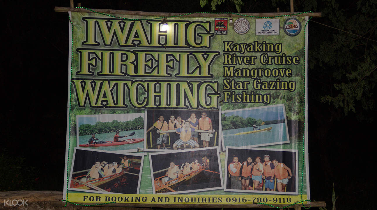 firefly watching iwahig