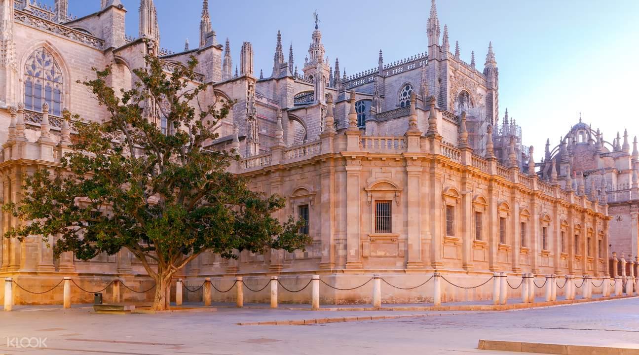 塞维利亚王宫 & 圣母主教堂 & 吉拉达塔步行导览
