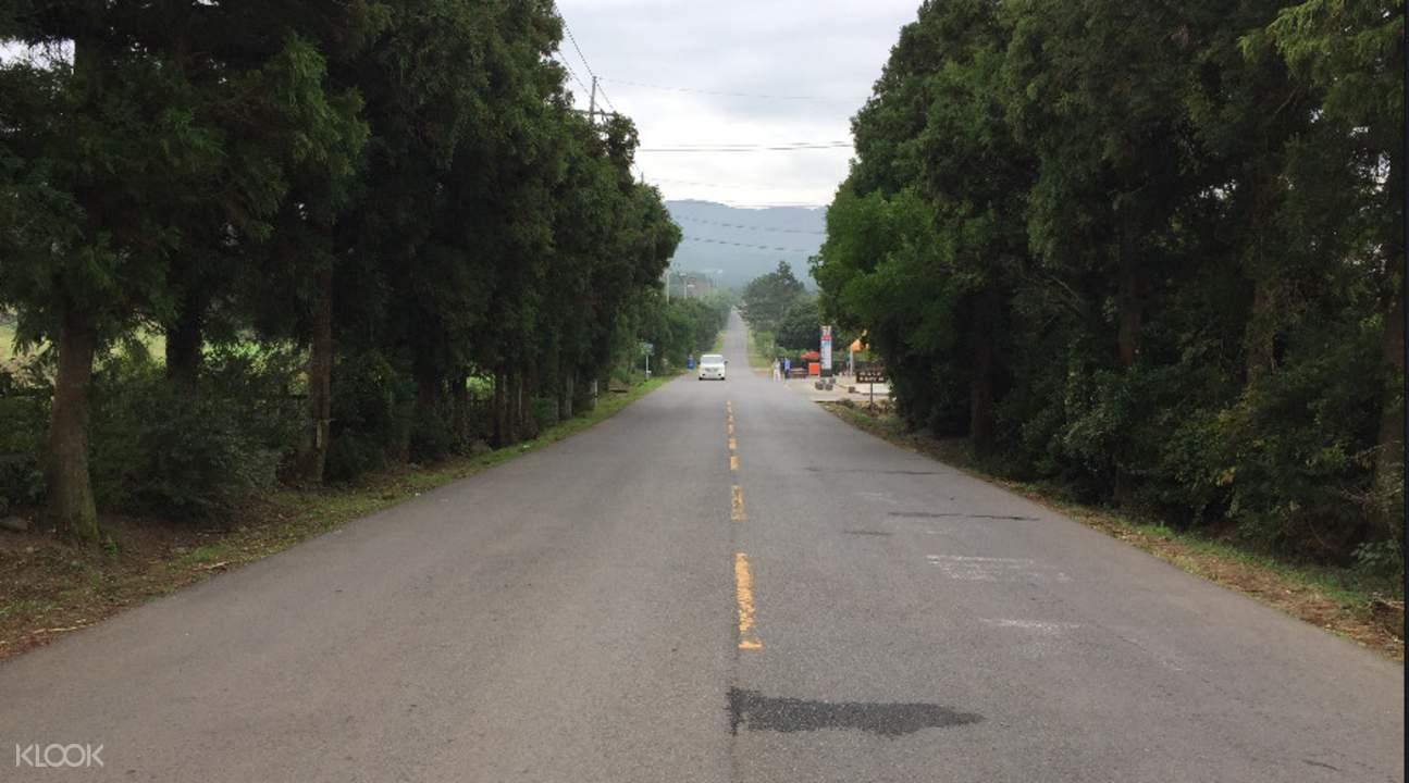 韓國濟州島南部漢拿山 & 神奇景觀一日遊 - KLOOK客路