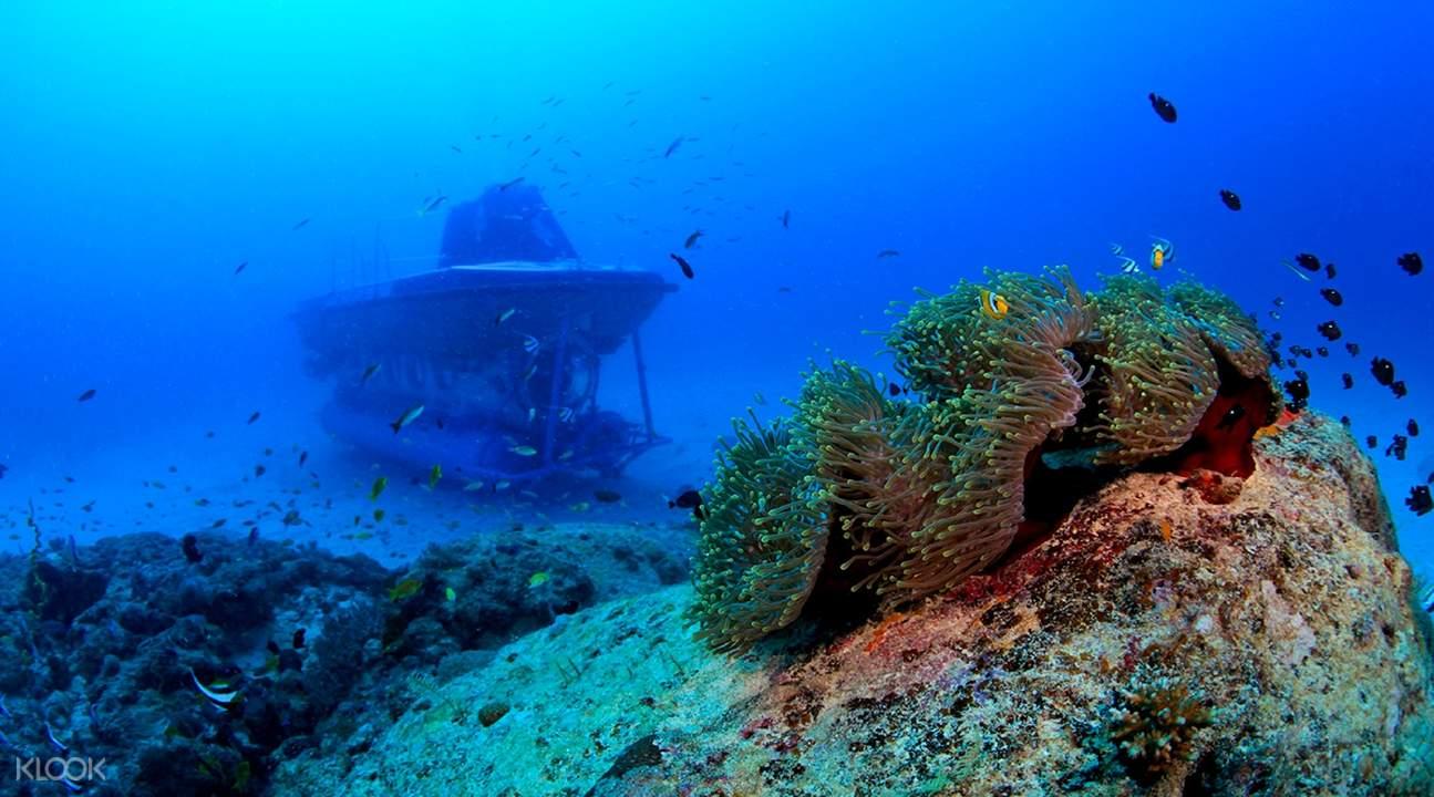 mauritius submarine tour