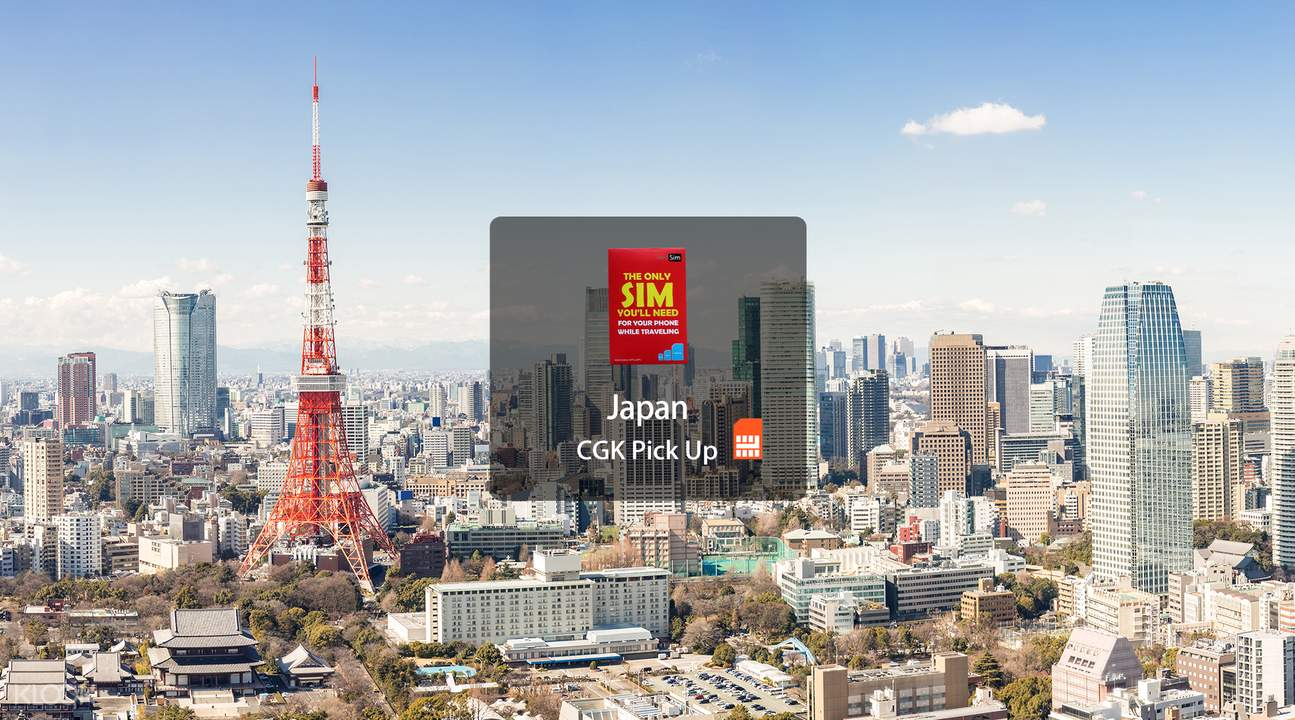 japan sim card data