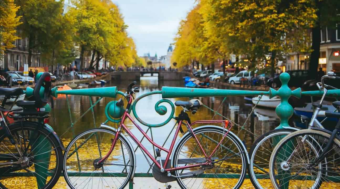 阿姆斯特丹自行車郊區探索之旅