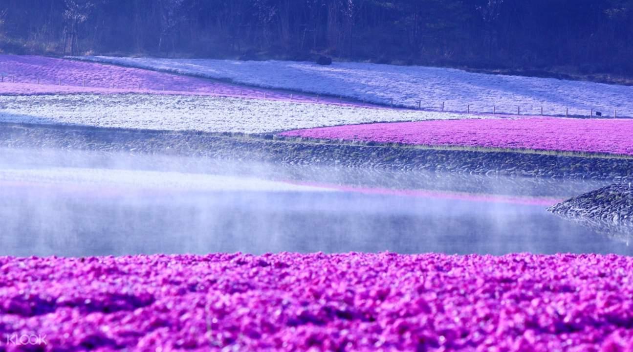 Lake Motosu Resort