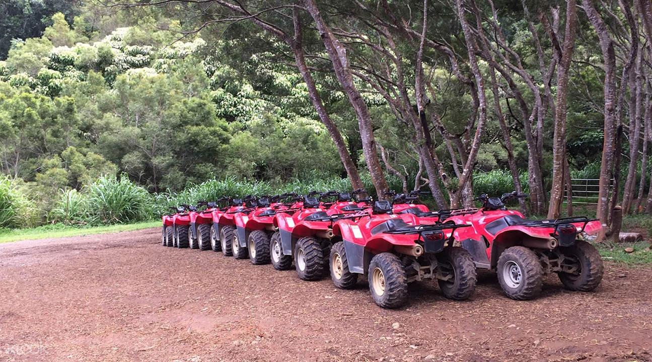 Waipio valley tour
