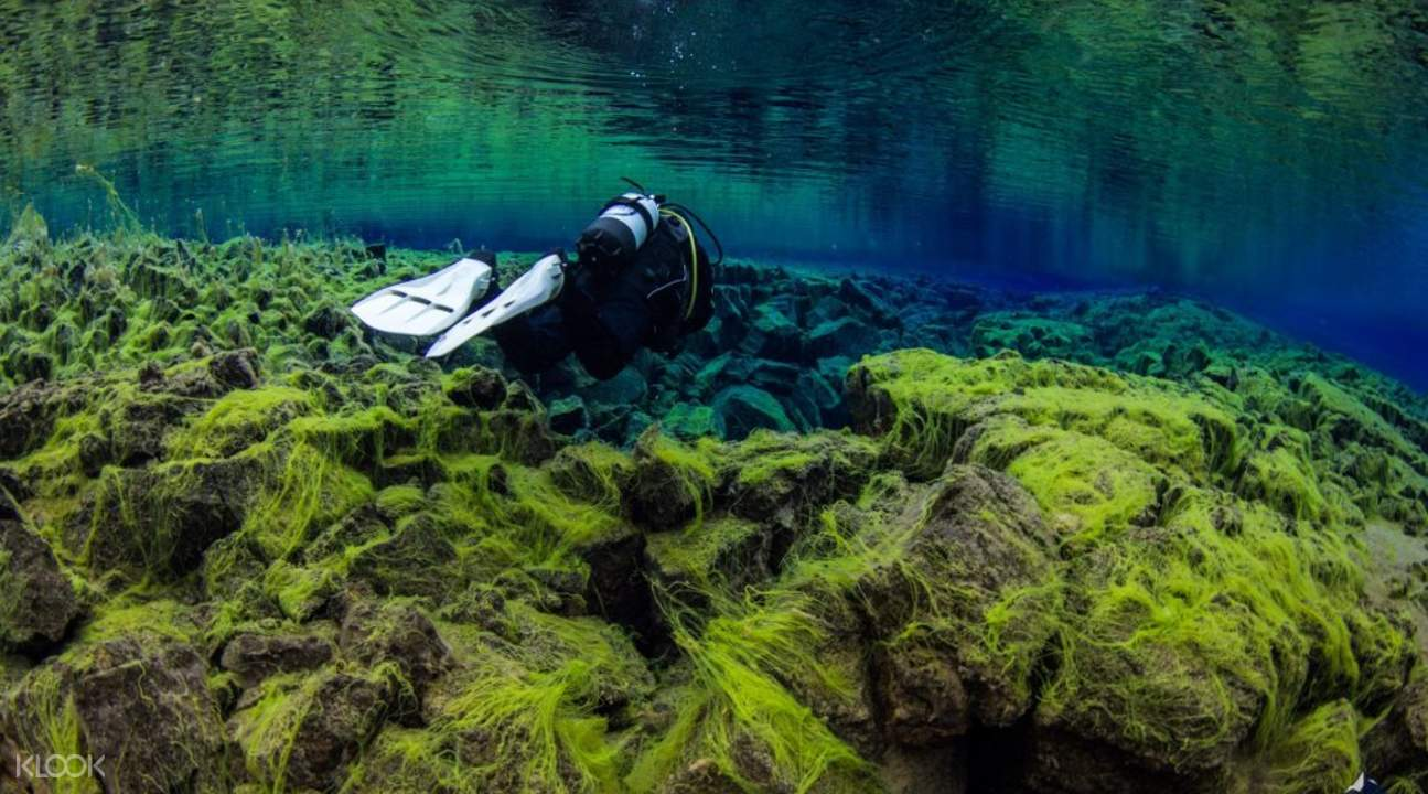 sifra fissure dive iceland