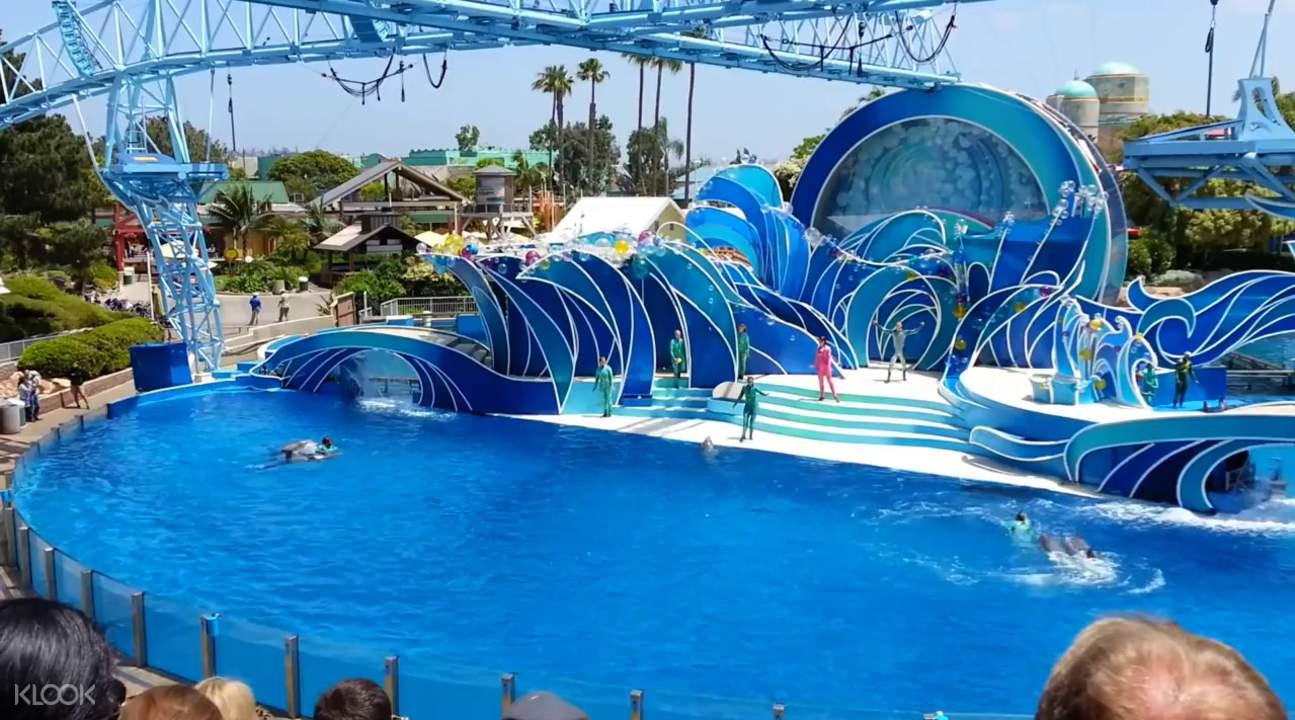 pattaya dolphin world pattaya full experience day tour from bangkok thailand