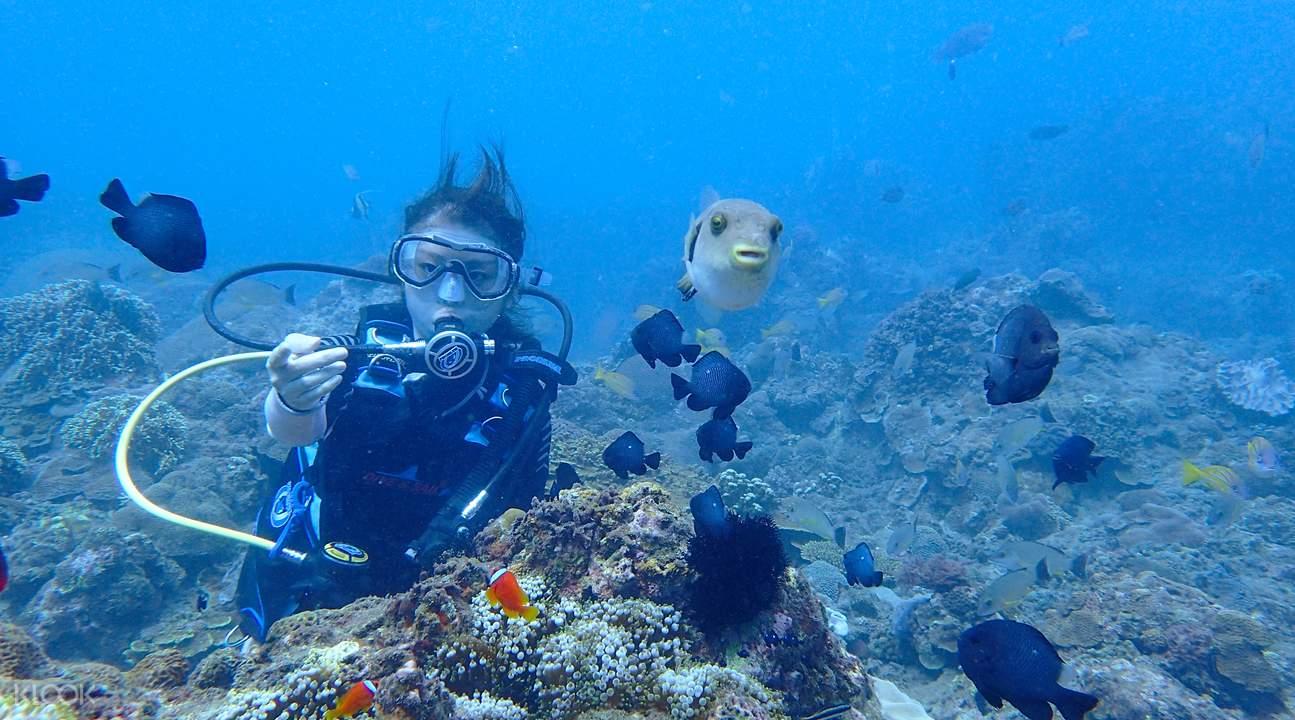 東北鼻頭角潛水