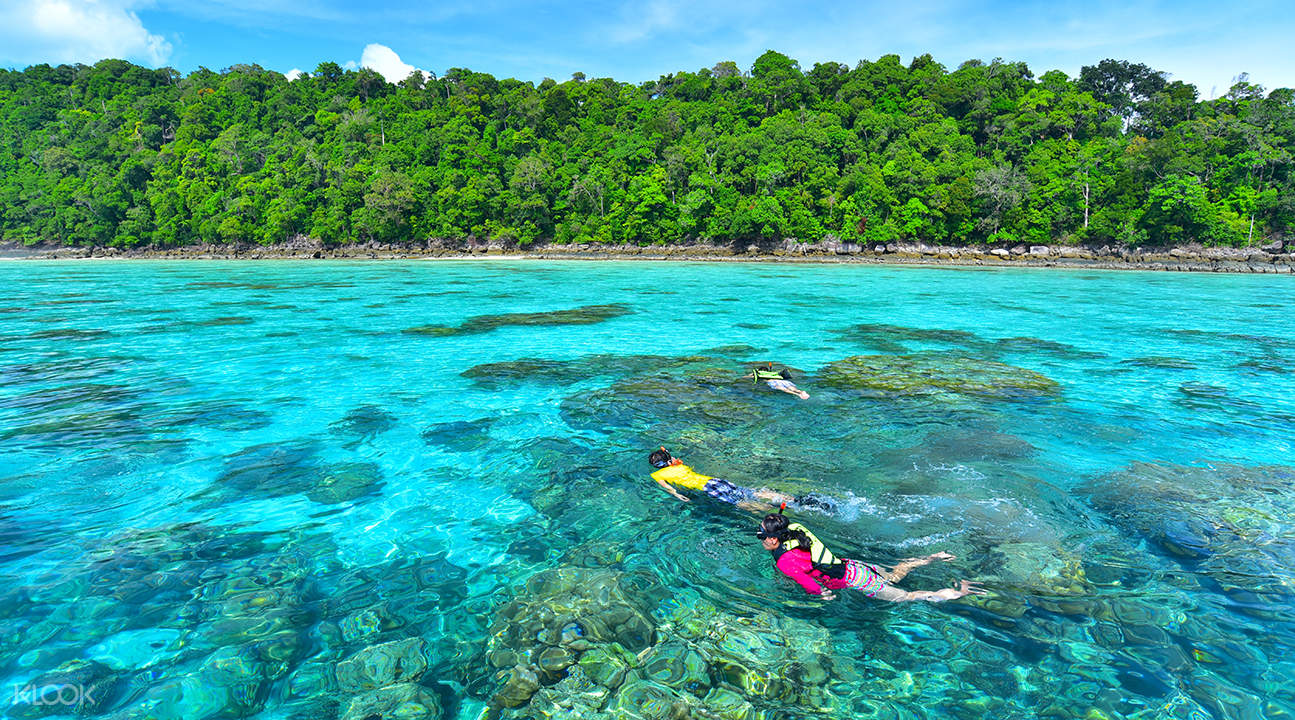 surin islands reef snorkeling