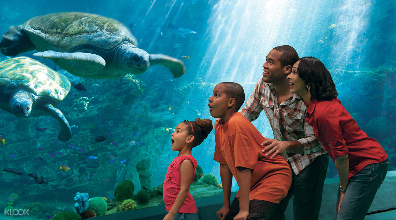 sea world san diego ticket