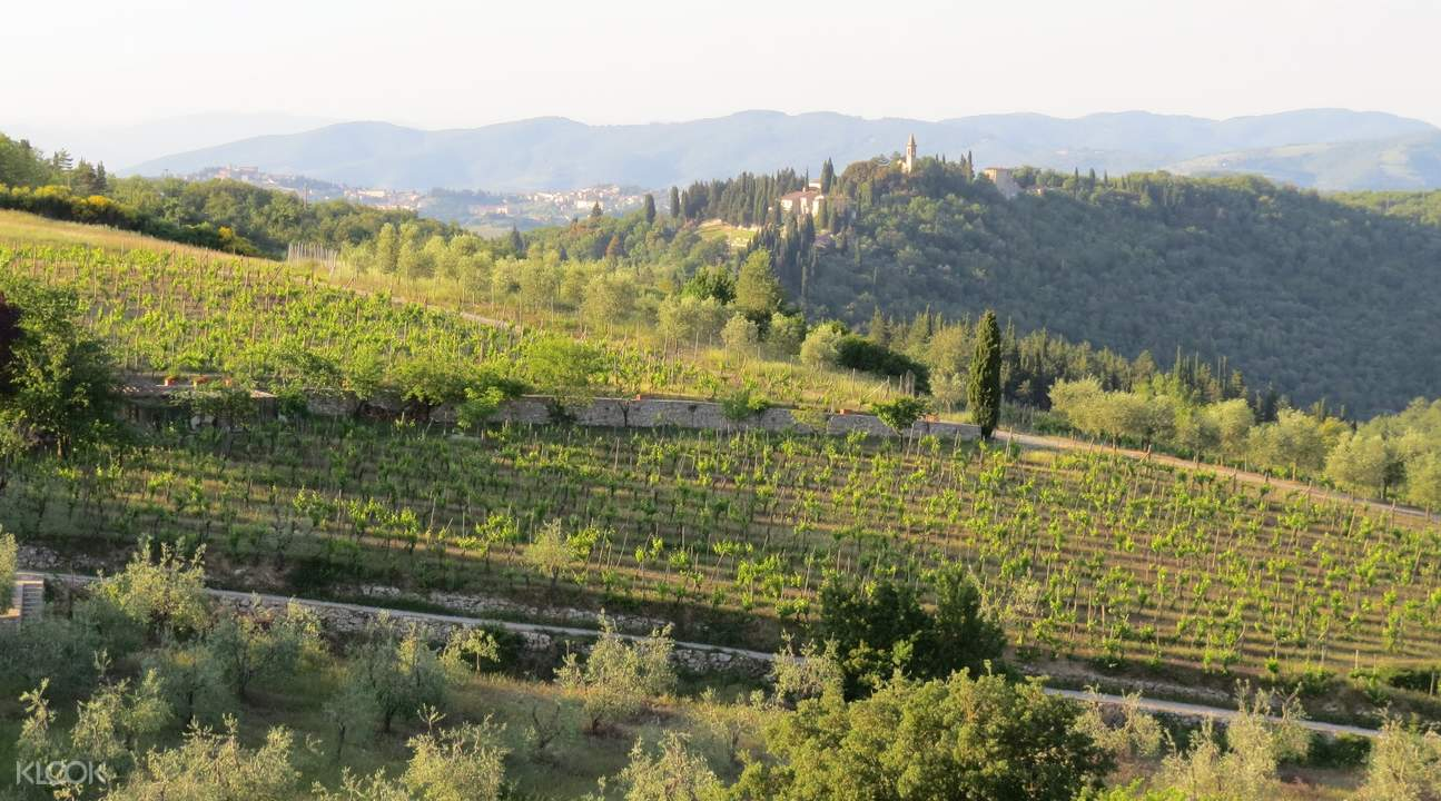 highlights of tuscany day tours from florence