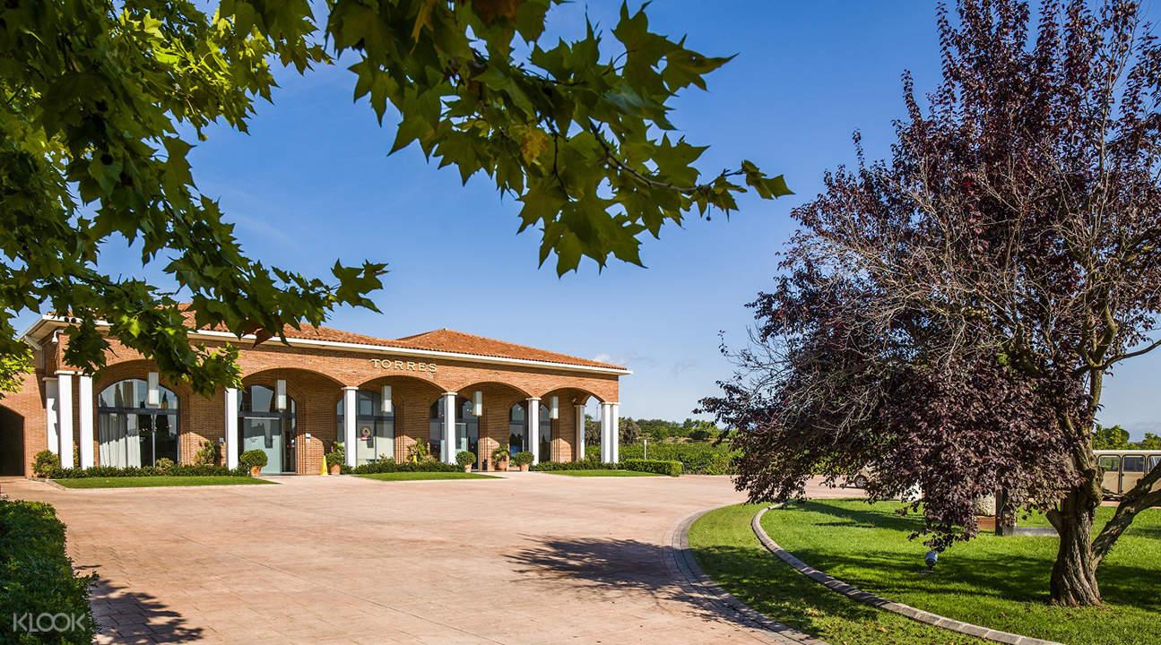 西班牙桃乐丝酒庄一日VIP体验