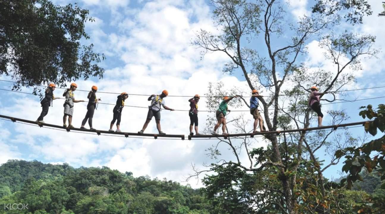 skybridge at the dragon flight zipline adventure