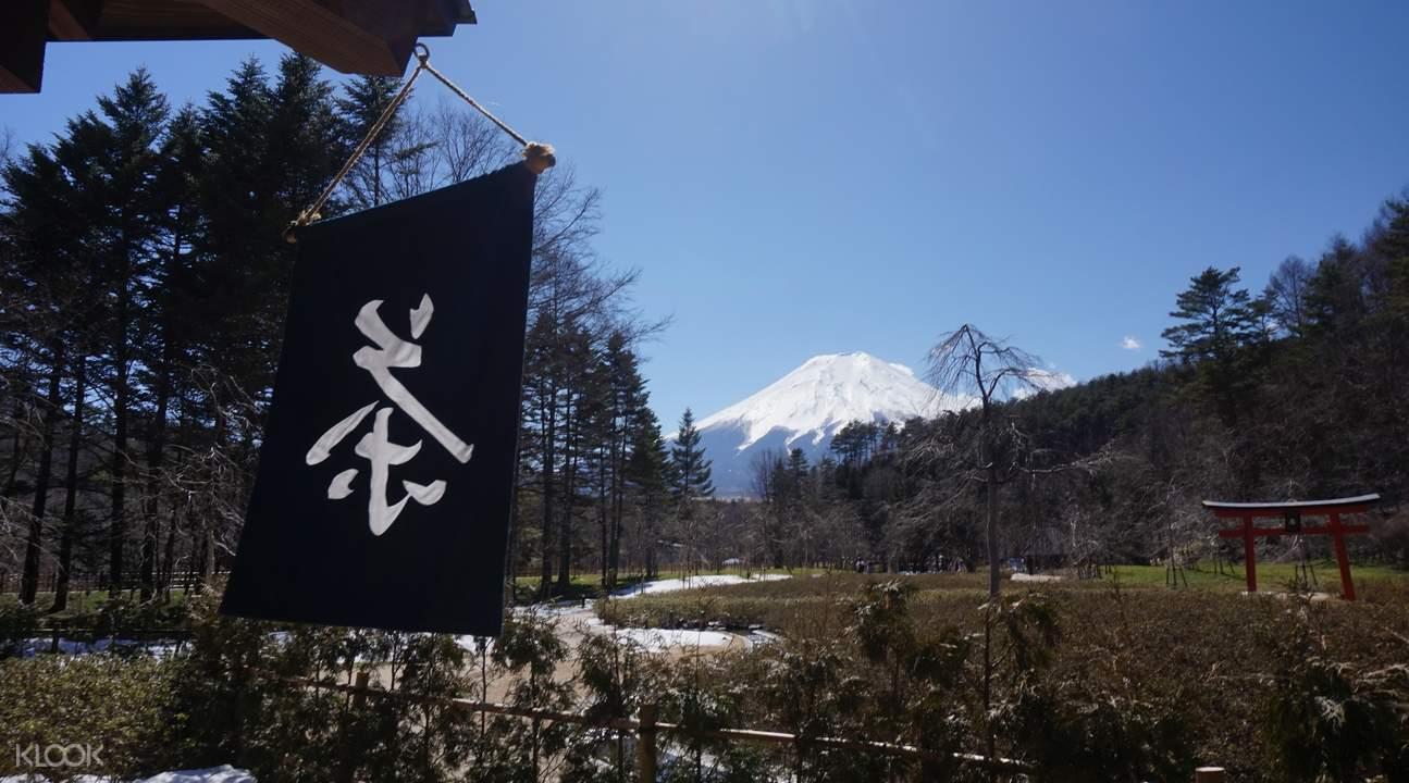 mt fuji village