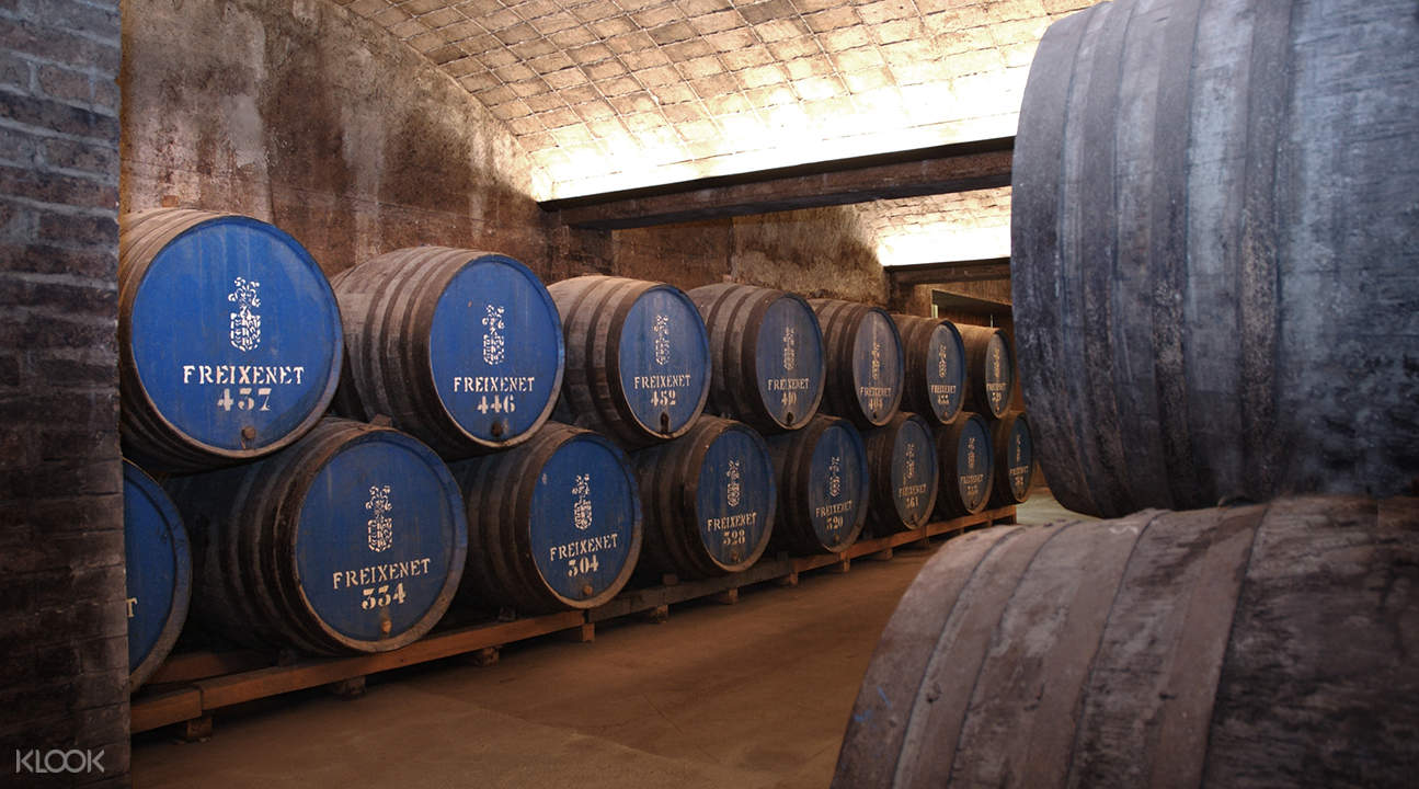 barcelona wine cellar tour