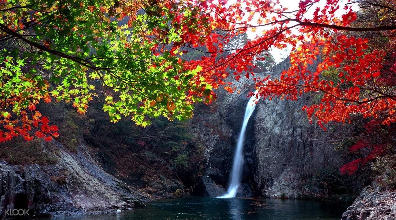边山半岛红叶一日游