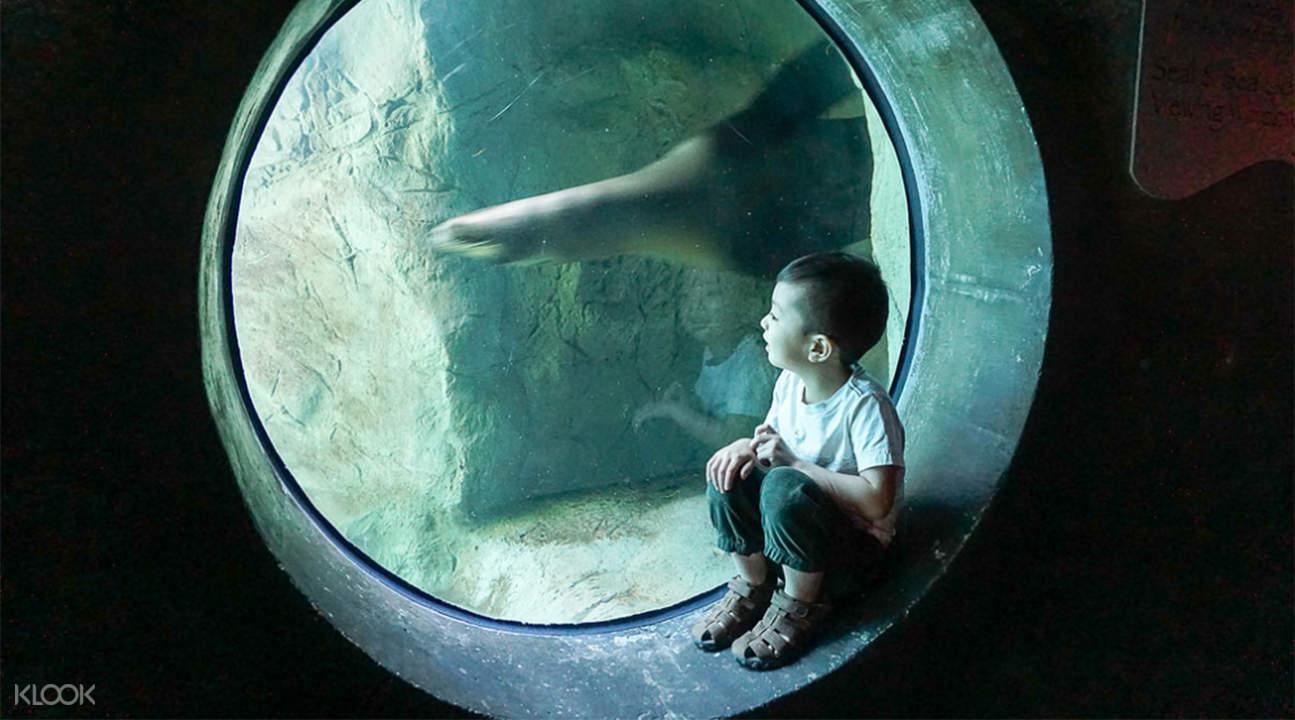 太平洋水族館門票