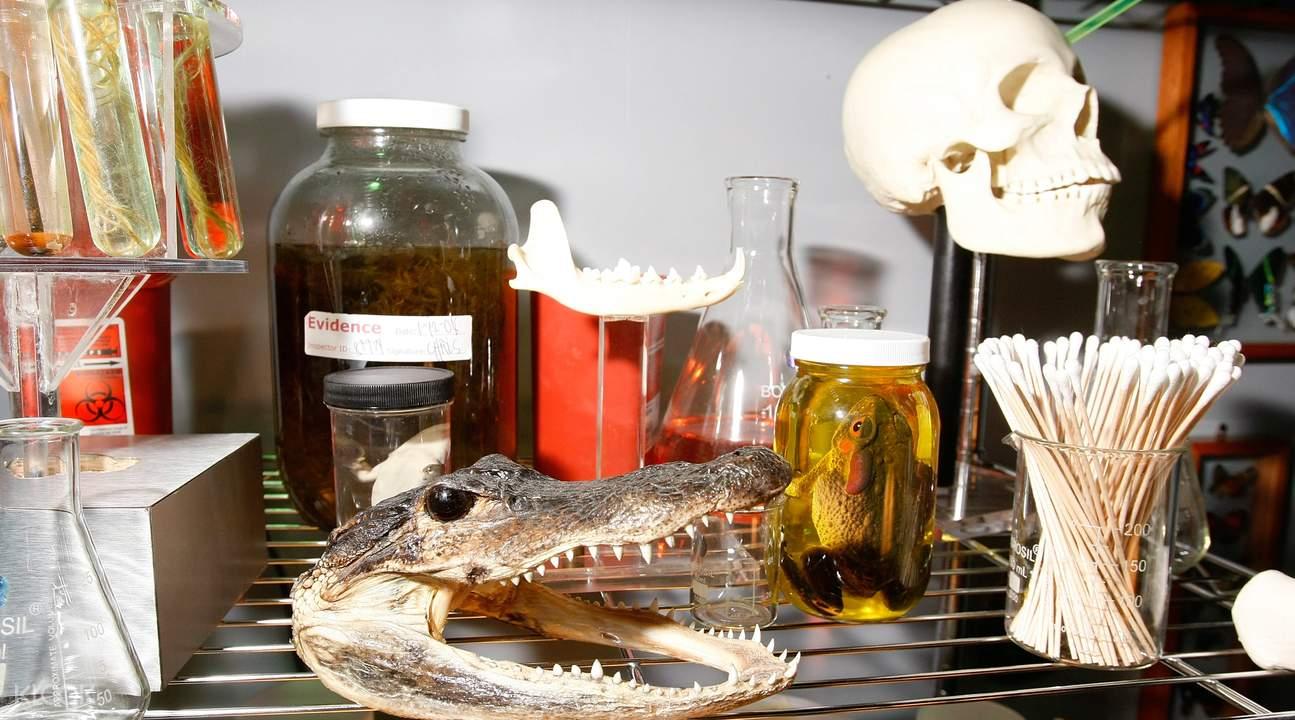 拉斯维加斯CSI犯罪现场调查体验馆