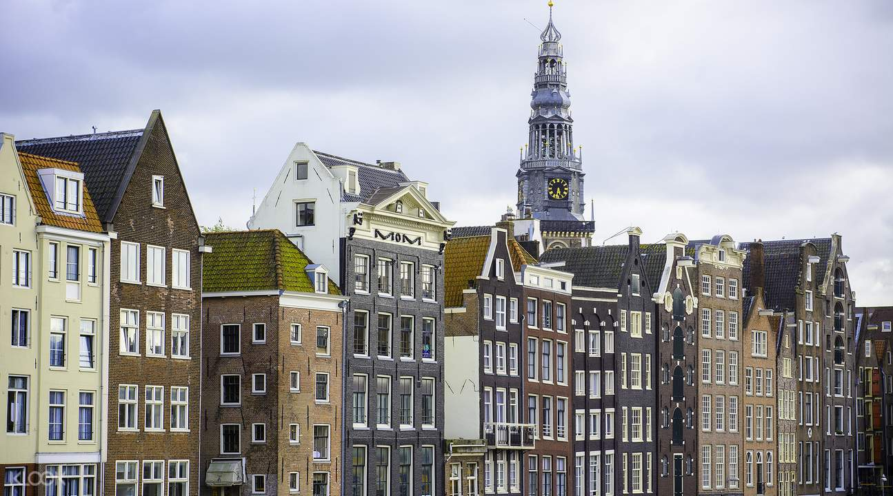 Day tours of Amsterdam