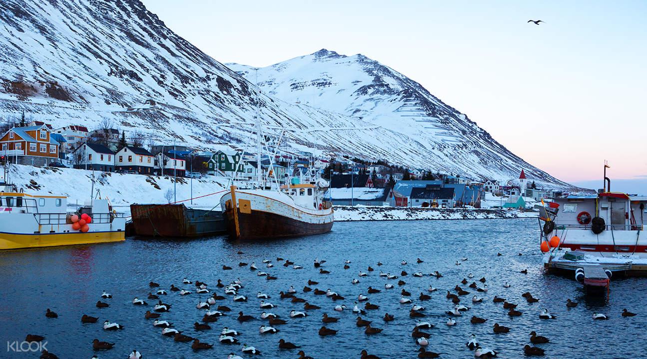 Siglufjörður 一日游 (阿库雷里出发)