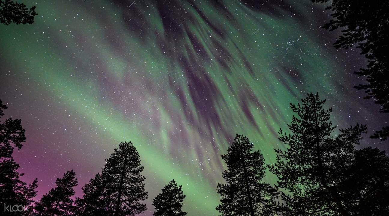 Aurora Forecast Rovaniemi