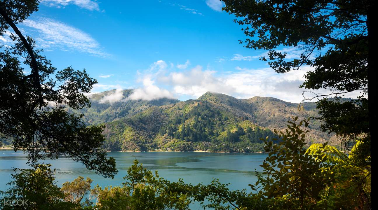 view of motuara island bird sanctuary