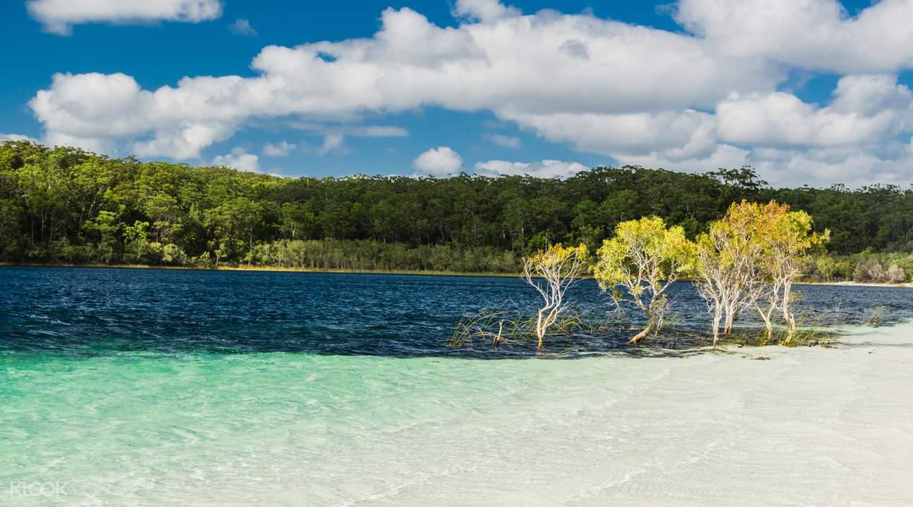 beauty spots tour fraser island