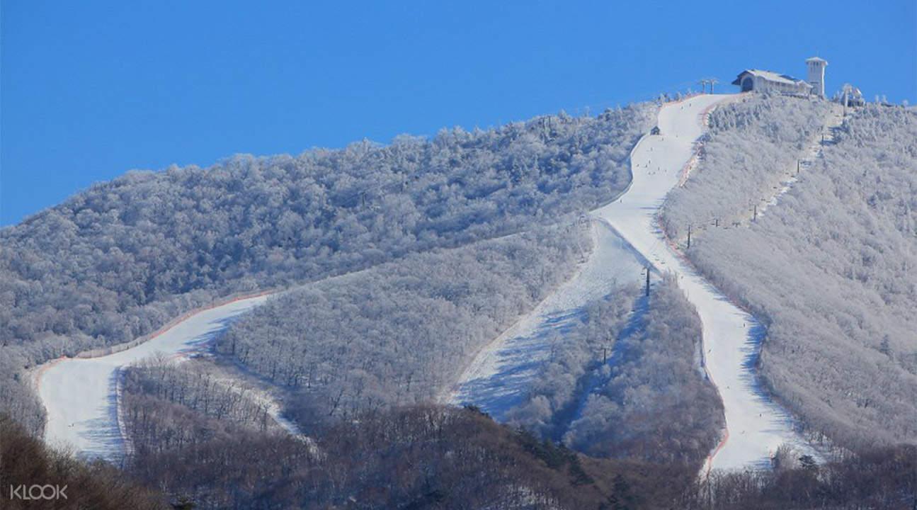 龍平度假村滑雪