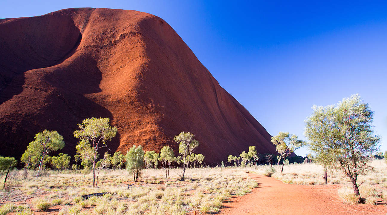 uluru base and sunset tour