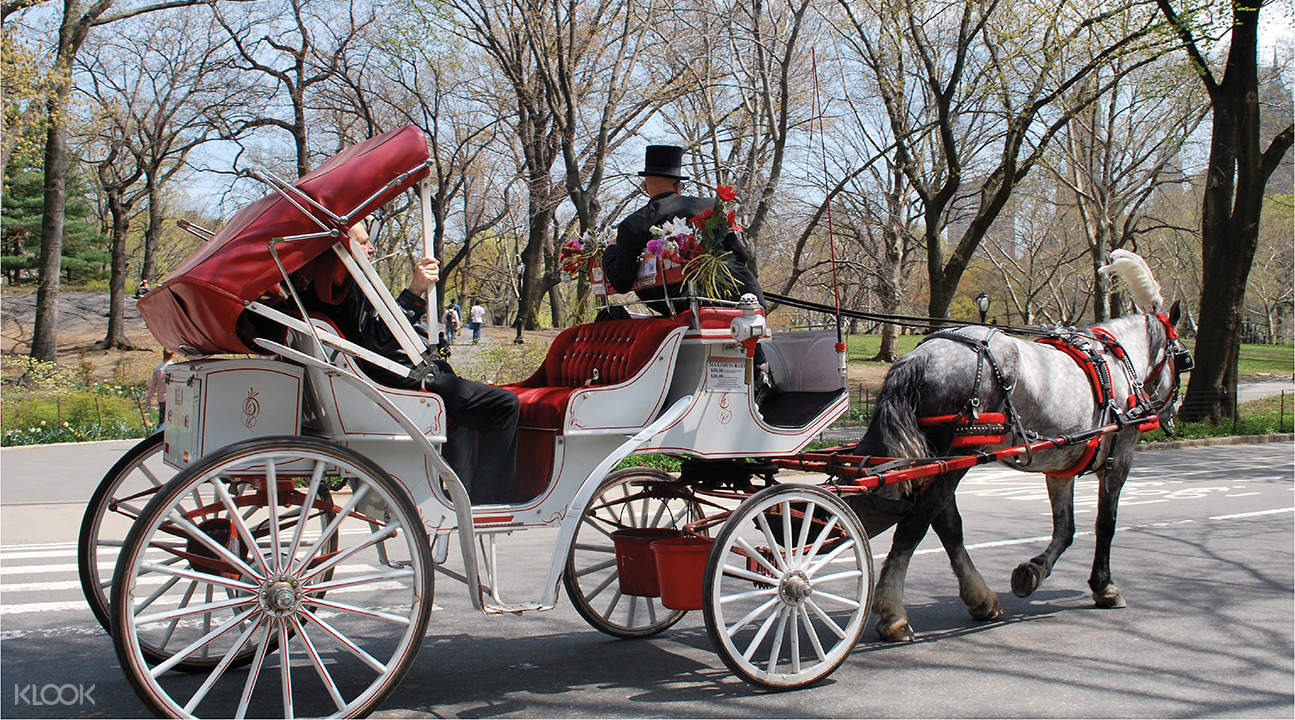 Central Park and Carriage Ride NYC