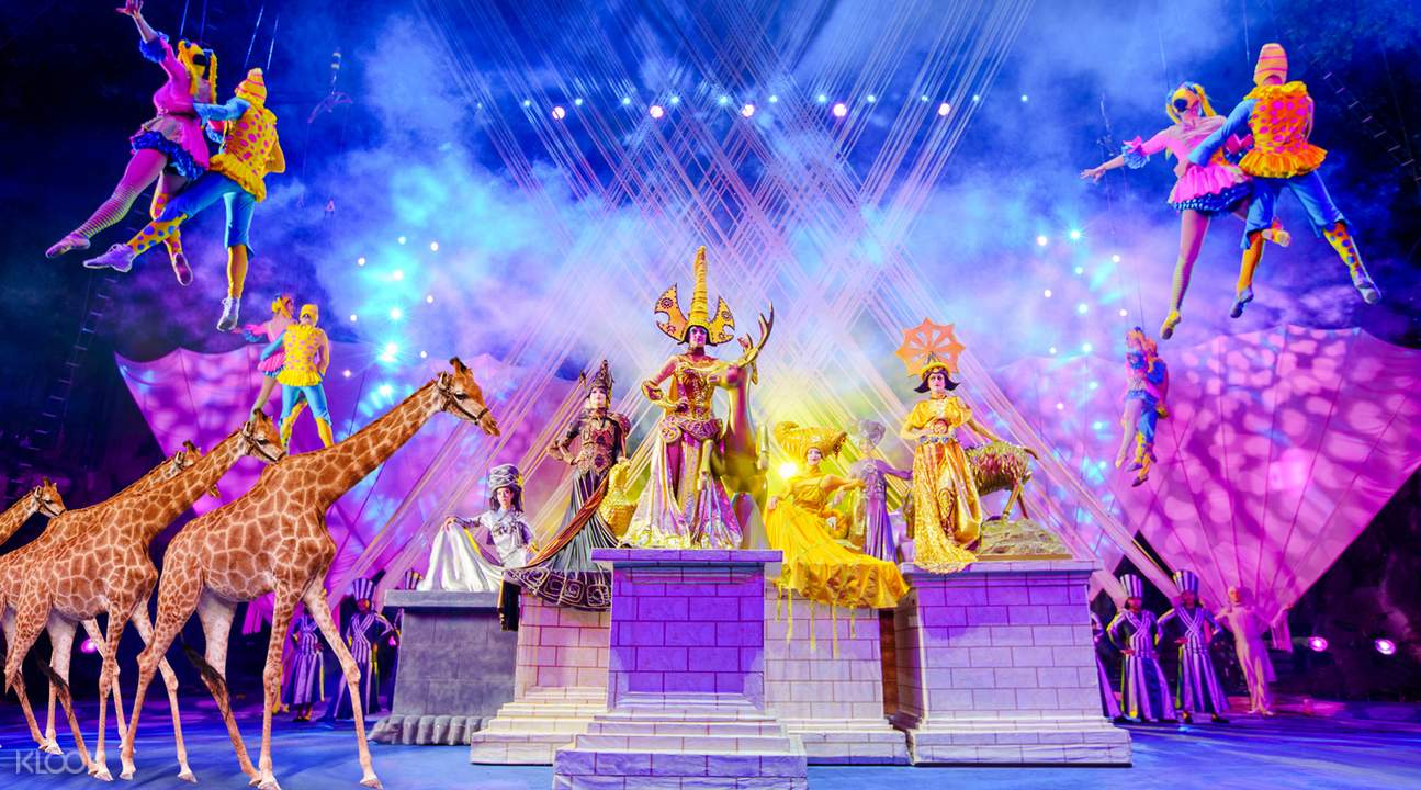 chimelong circus show