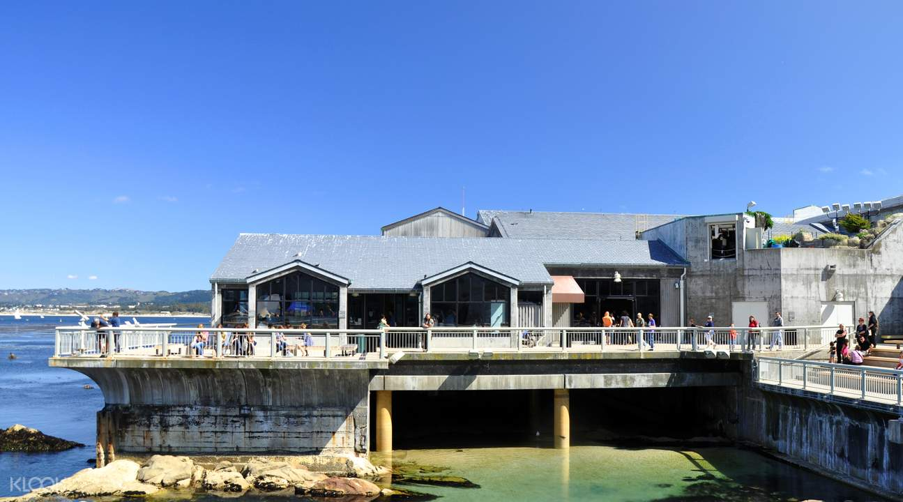 Monterey Bay Aquarium Admission Ticket San Francisco Usa Klook