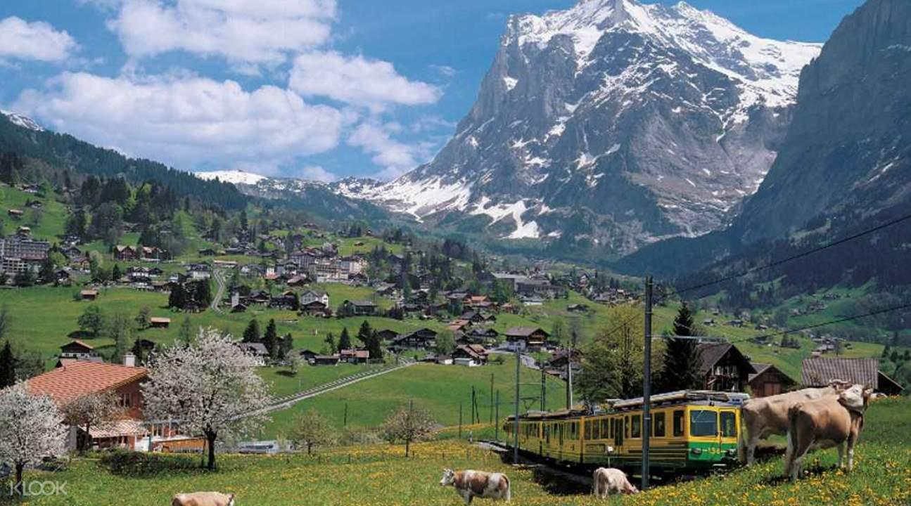 grindelwald and interlaken day tour zurich