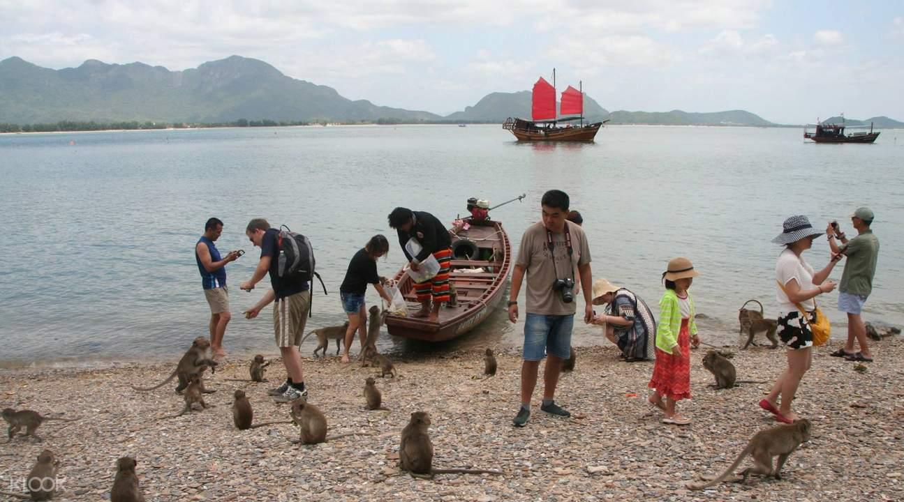 monkey island tour thailand