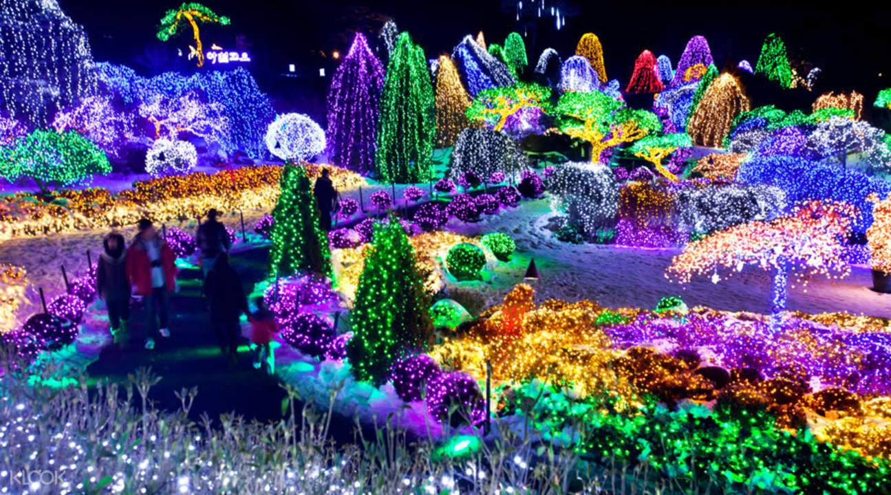 Image result for Garden of Morning Calm Lighting Festival