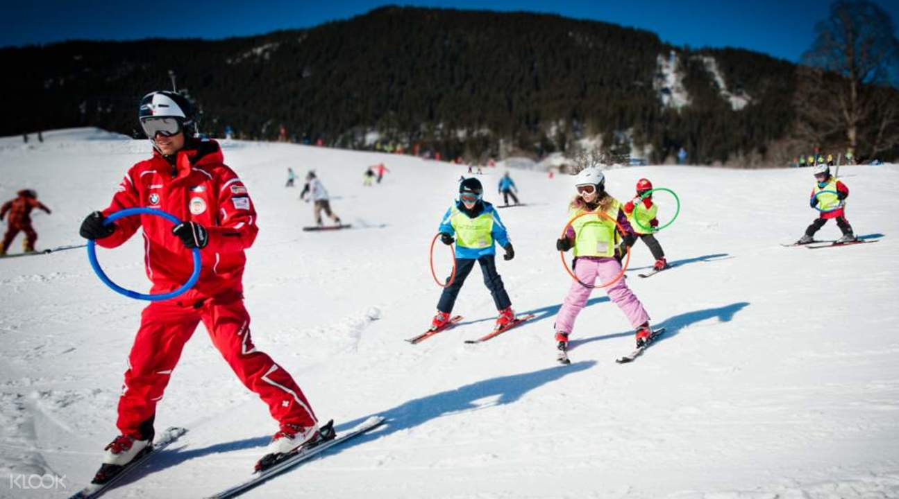Day Trip to Alps with 2.5 Hour Ski-Course from Zurich