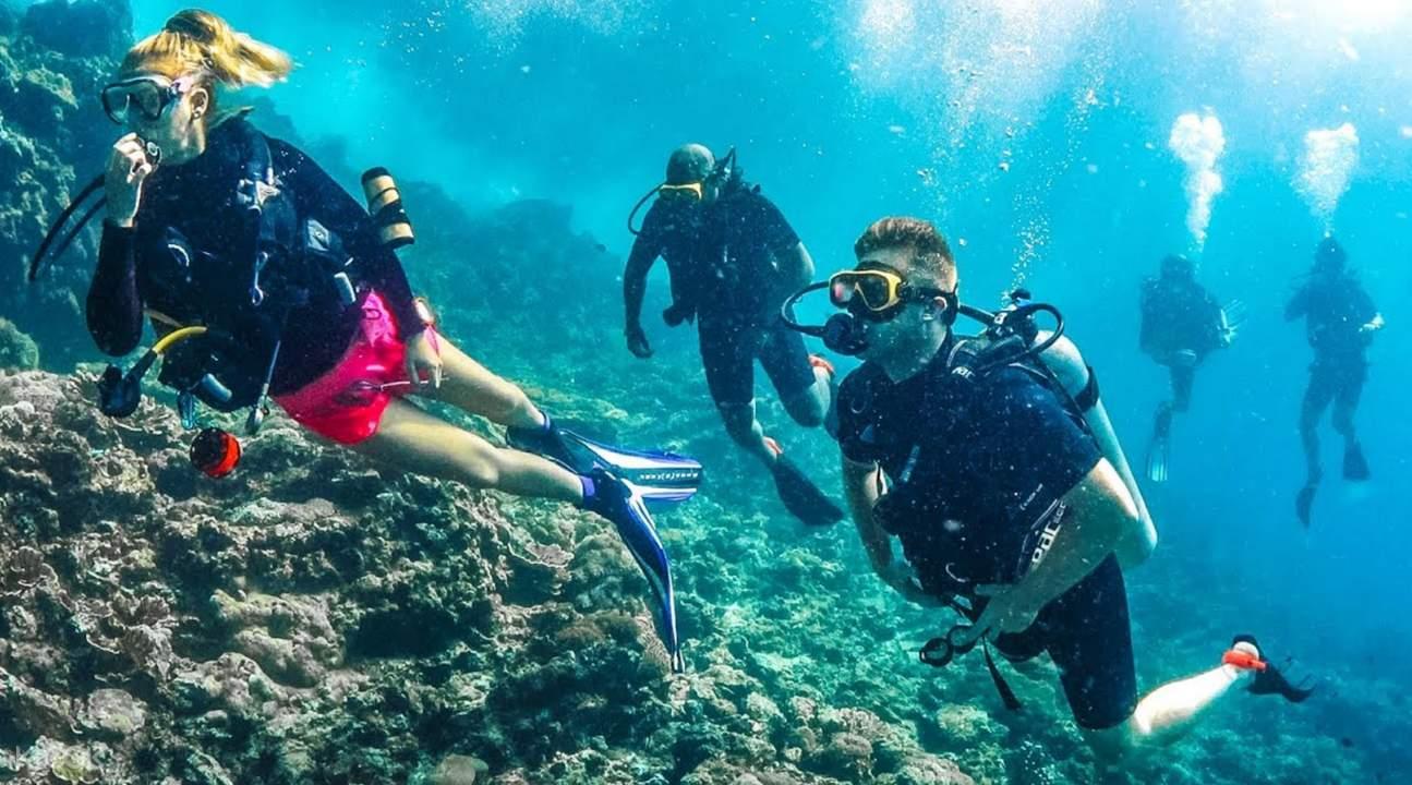 scuba diving mediterranean sea