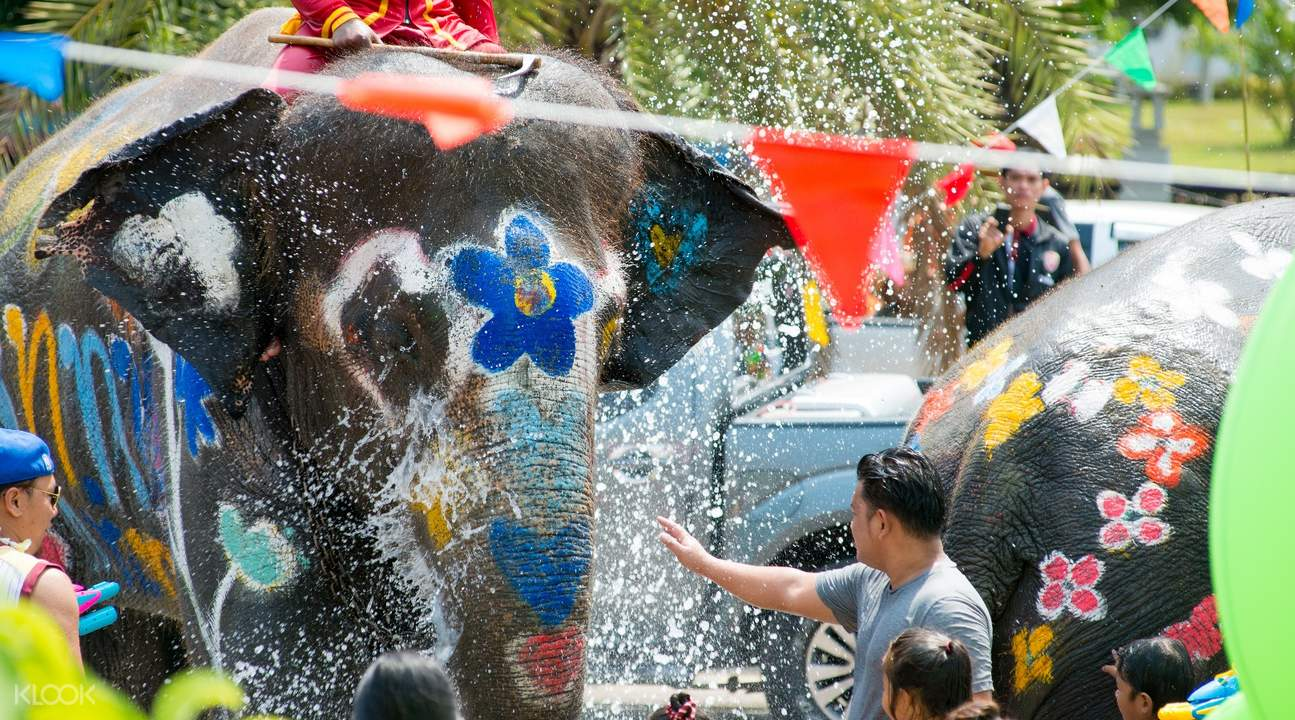 Ancient Ayutthaya Tour (Songkran Colorfully Painted Elephants) by AK