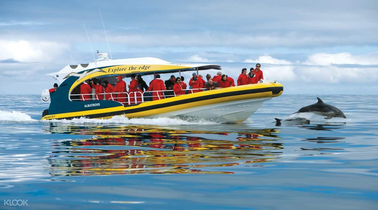塔斯曼島遊船巡遊之旅