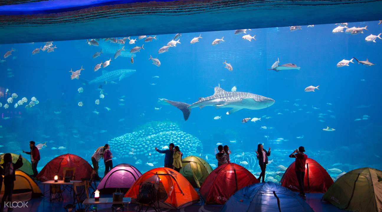 Chinelong Ocean Kingdom