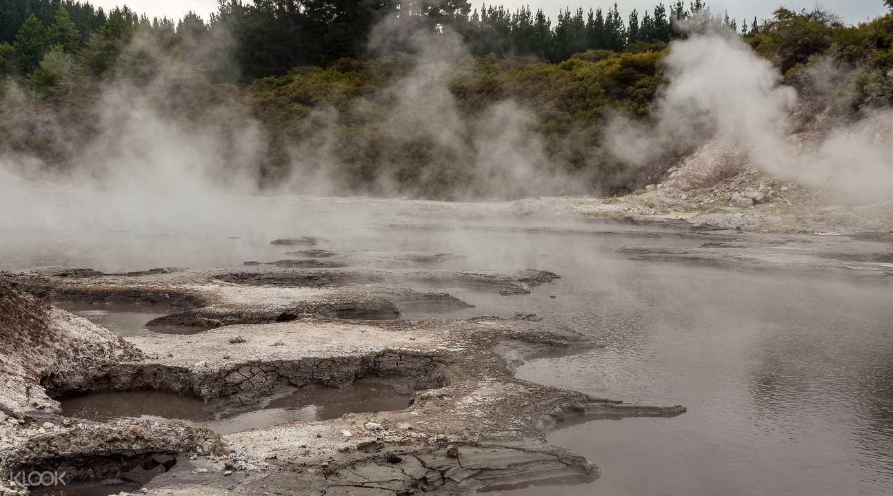 Hells Gate geothermal park geyser